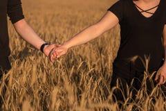 Пары держа руки в пшеничном поле стоковые фото