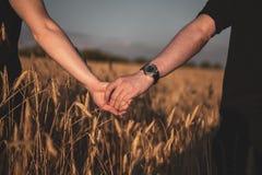 Пары держа руки в пшеничном поле стоковая фотография rf
