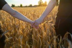 Пары держа руки в пшеничном поле стоковое изображение rf