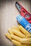 Пары Д-р инженерства уровня конструкции защитных перчаток голубого Стоковая Фотография