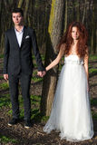 Пары держа руки в лесе Стоковые Изображения