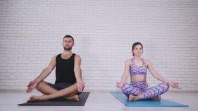 Пары делая йогу в студии сток-видео