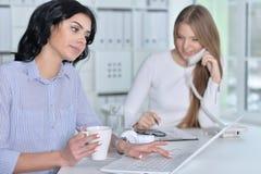 Пары женщин работают в офисе Стоковая Фотография