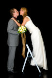 пары заново wed Стоковое Изображение