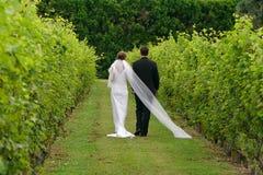 пары заново wed Стоковые Изображения RF