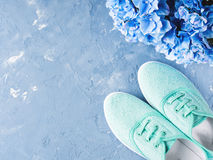 Пары зеленых тапок холста женщины на голубой предпосылке Стоковое Изображение