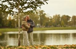пары зреют гулять Стоковое Фото