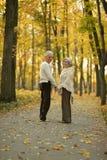 пары зреют гулять Стоковая Фотография RF
