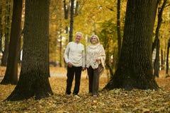 пары зреют гулять Стоковые Изображения