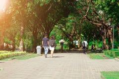 Пары идя на общественный парк Романтичная концепция настроения стоковое изображение