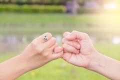 Пары используют их мизинцы совместно в саде стоковое фото