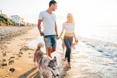 Пары идя с собаками на пляже Стоковое Фото