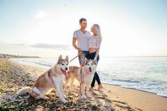 Пары идя с собаками на пляже Стоковое Изображение RF