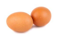 Пары коричневых яичек цыпленка Стоковая Фотография RF