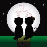 Пары котов бесплатная иллюстрация
