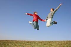 пары летают весна Стоковые Фото