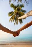 Пары лета на тропическом пляже стоковые фото