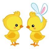 Пары милых цыпленоков пасхи Стоковые Фотографии RF