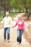 пары наслаждаясь прогулкой парка старшей Стоковая Фотография RF