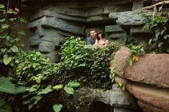 Пары на прогулке в саде романтичного места ботаническом Стоковые Изображения