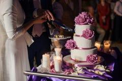 Пары новобрачных высекая очень вкусный белый свадебный пирог Стоковое Изображение RF