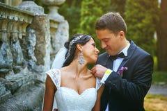 Пары дня свадьбы романтичные Стоковые Фото
