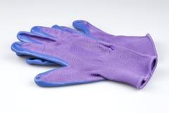 Пары перчаток голубых и фиолетовых дам садовничая Стоковое Изображение RF