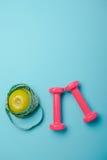 Пары пинка гантели 1 kg на голубой предпосылке Стоковые Фото