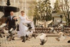 пары поженились заново Стоковая Фотография RF