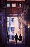 Пары, рука об руку на Венеции Стоковое Изображение