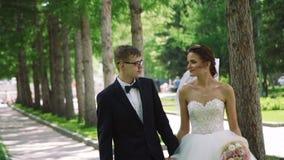 Пары свадьбы идя в парк города акции видеоматериалы