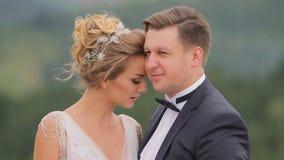 Пары свадьбы в горах видеоматериал