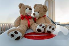 Пары сидя плюшевых медвежоат на автомобиле, подарка, Valenti стоковое изображение rf