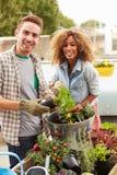 Пары смешанной гонки засаживая сад крыши совместно Стоковое Изображение