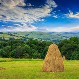 Пары стогов сена и дерева на горе Стоковое Изображение