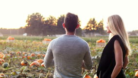 Пары стоя в поле тыквы сток-видео