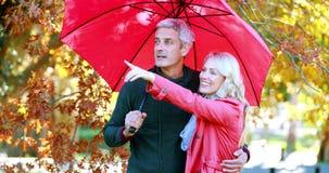 Пары стоя под зонтиком в парке видеоматериал