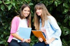 Пары студентов на парке Стоковые Изображения RF