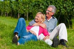 пары счастливые зреют outdoors стоковые изображения