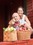 Пары с   корзины вполне яблок Стоковое Фото