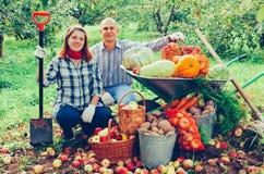Пары с сжатыми овощами в саде стоковое фото