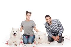 пары с собаками и сердце сформировали confetti на белизне, валентинки стоковые фото