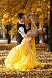 Пары танцоров танцуя в древесинах Человек с костюмом, женщина в желтой длинной середине платья парка дворца в осени Высушите упад Стоковая Фотография RF