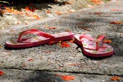 Пары тапочек Стоковая Фотография RF