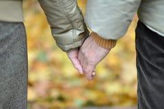 Пары тратя время внешнее в парке Стоковое Изображение