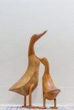 Пары утки Стоковое Изображение RF