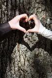 пары формируя сердце рук Стоковое Изображение RF