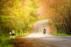 Пары bigbike сцены весеннего времени осени дороги романтичные любят viewl Beautifu туриста перемещения на Ang Khang Doi, Чиангмае Стоковые Изображения