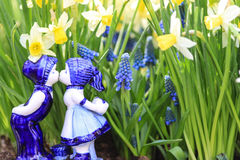 Пары Delfts голубые целуя с предпосылкой daffodil стоковые изображения