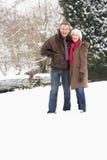 пары landscape старший снежный гулять стоковое фото